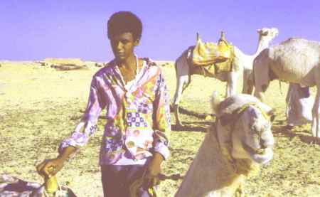 nubian-and-camel-retro-pic