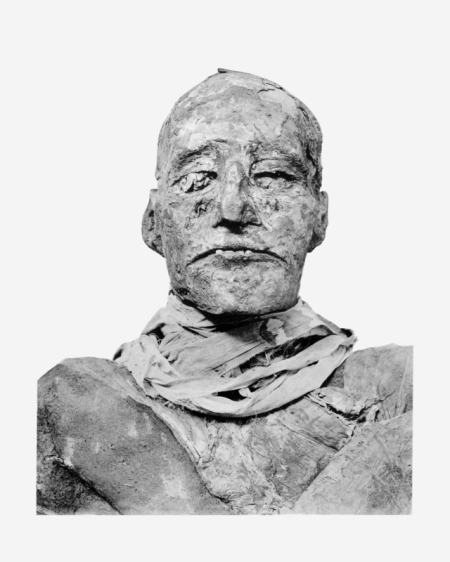 "Mummified Ramesses III 20th Dynasty ""New Kingdom"""