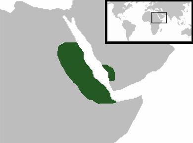 Aksumite Empire Map